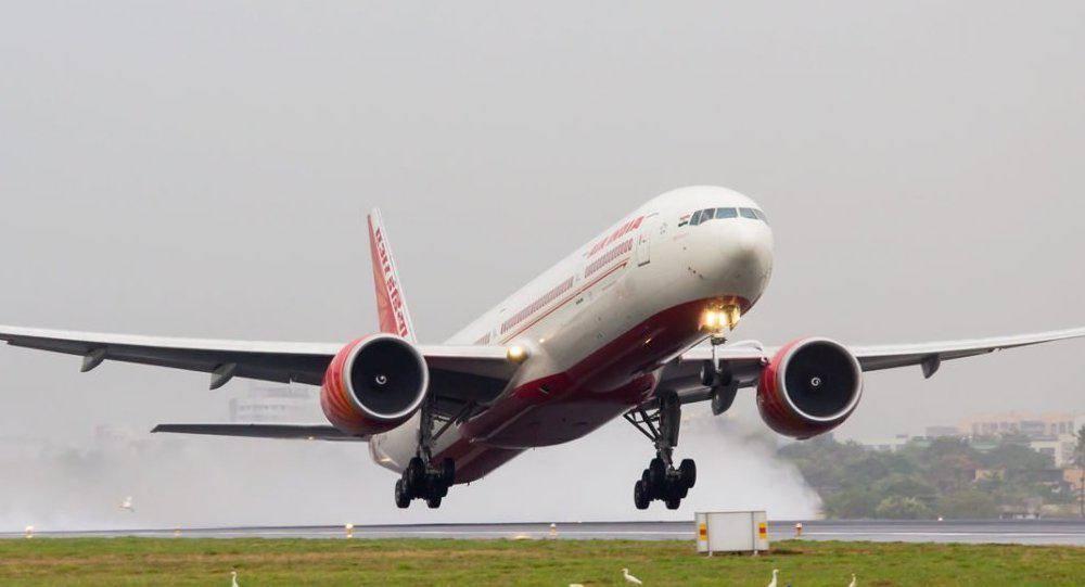 Air India flight returns mid-air after bat found in plane - News | Khaleej Times